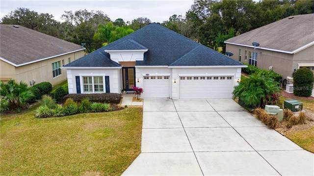 34550 Heavenly Lane, Dade City, FL 33525 (MLS #T3285091) :: Your Florida House Team