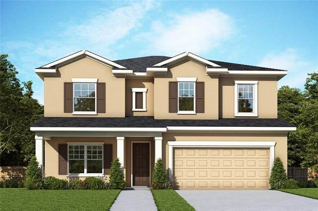 17182 Hickory Wind Drive, Clermont, FL 34711 (MLS #T3285099) :: Visionary Properties Inc