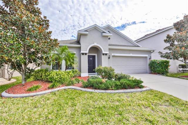 12114 Whistling Wind Drive, Riverview, FL 33569 (MLS #T3285122) :: Dalton Wade Real Estate Group