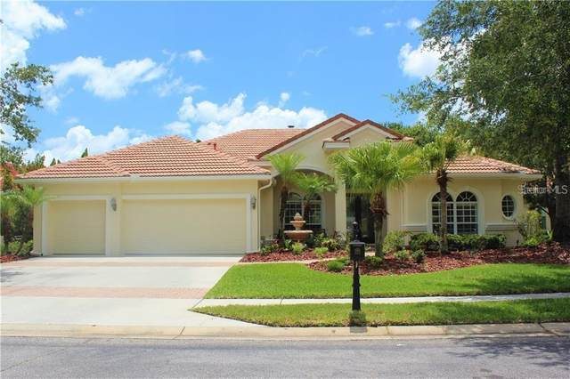 17206 Emerald Chase Drive, Tampa, FL 33647 (MLS #T3285155) :: The Duncan Duo Team