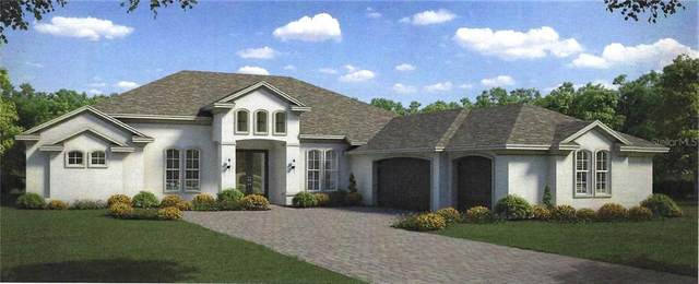 5228 Lake Venice Drive, Wimauma, FL 33598 (MLS #T3285161) :: Team Borham at Keller Williams Realty