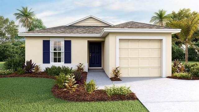 16715 Kingman Reef Street, Wimauma, FL 33598 (MLS #T3285180) :: Griffin Group