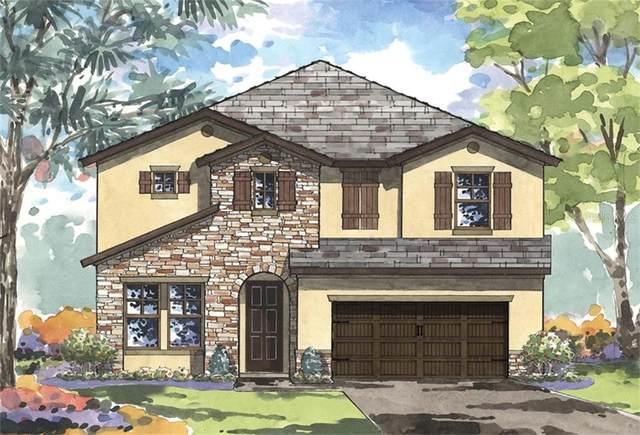 13135 Foxtail Fern Drive, Riverview, FL 33579 (MLS #T3285215) :: Dalton Wade Real Estate Group