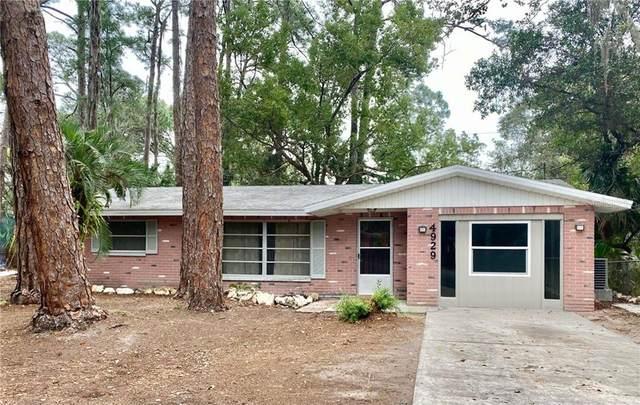 New Port Richey, FL 34652 :: Your Florida House Team