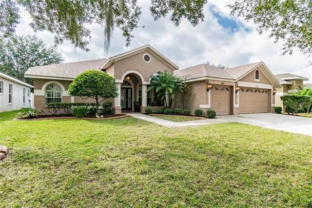 7222 Bucks Ford Drive, Riverview, FL 33578 (MLS #T3285264) :: Dalton Wade Real Estate Group