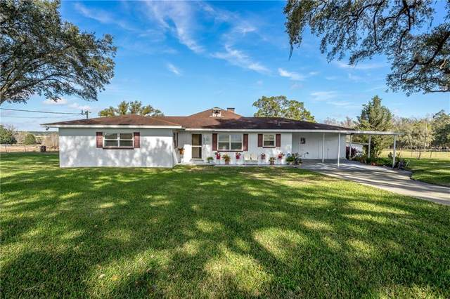 31505 Saint Joe Road, Dade City, FL 33525 (MLS #T3285270) :: Lockhart & Walseth Team, Realtors