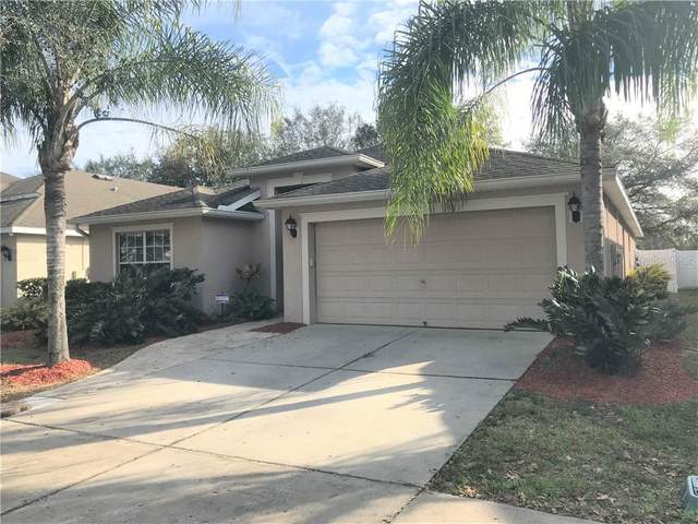 205 Fern Gulley Drive, Seffner, FL 33584 (MLS #T3285286) :: Realty One Group Skyline / The Rose Team