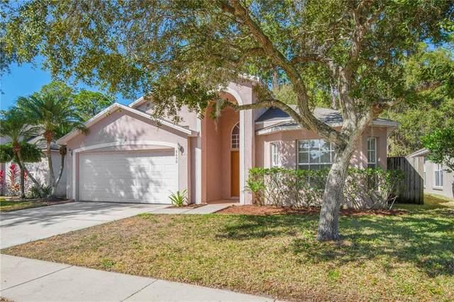 8650 Manassas Road, Tampa, FL 33635 (MLS #T3285331) :: Everlane Realty