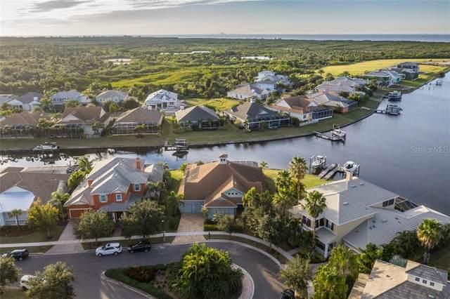 5322 Fishersound Lane, Apollo Beach, FL 33572 (MLS #T3285365) :: Griffin Group