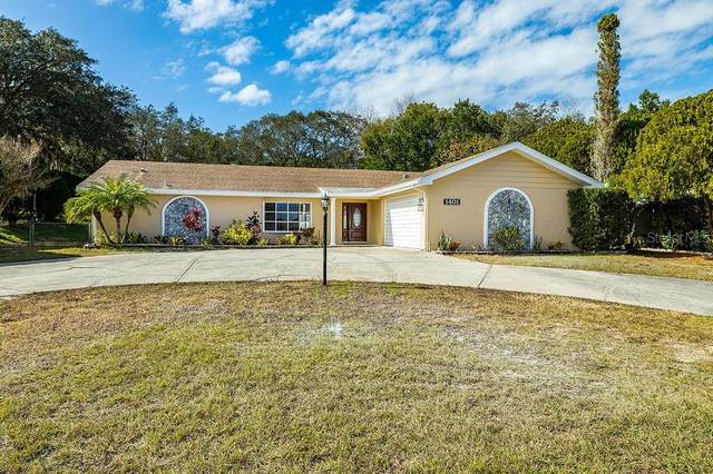 1401 Ivydale Road, Spring Hill, FL 34606 (MLS #T3285374) :: Prestige Home Realty