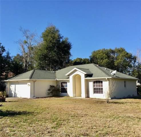 1728 Bavon Drive, Deltona, FL 32725 (MLS #T3285385) :: The Duncan Duo Team