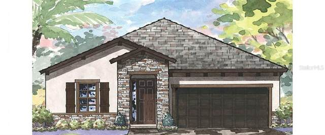 12656 Shetland Walk Drive, Lithia, FL 33547 (MLS #T3285403) :: Premier Home Experts