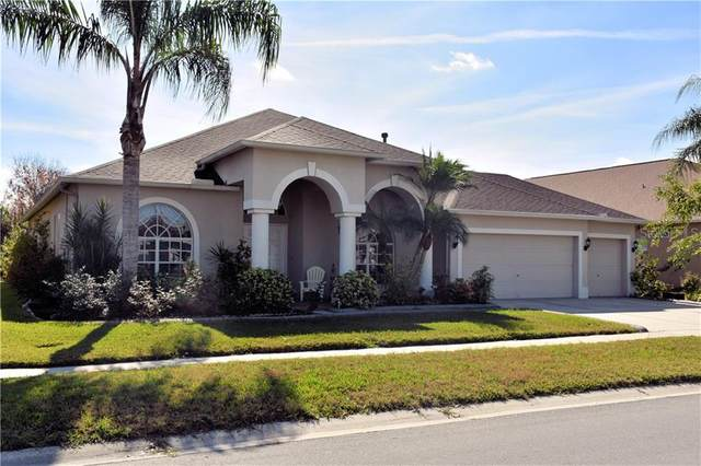 10125 Queens Park Drive, Tampa, FL 33647 (MLS #T3285421) :: Dalton Wade Real Estate Group