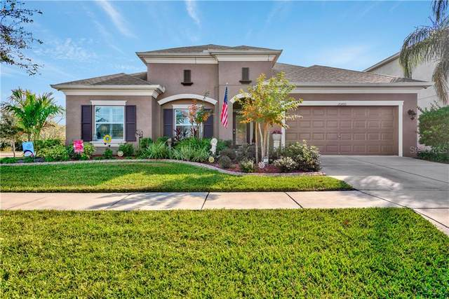 10460 Flagstaff Falls Avenue, Riverview, FL 33578 (MLS #T3285450) :: Dalton Wade Real Estate Group