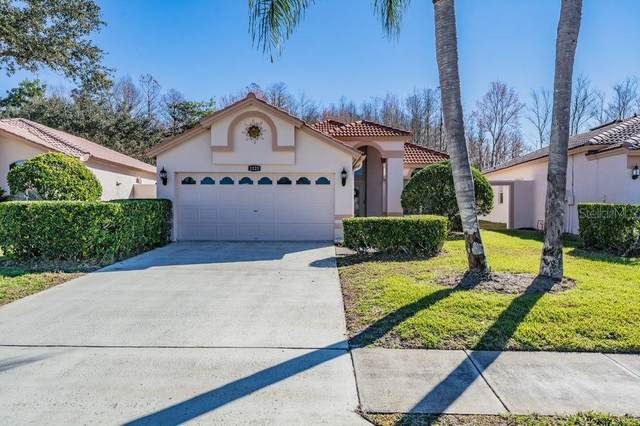 1123 Dartford Drive, Tarpon Springs, FL 34688 (MLS #T3285475) :: Keller Williams on the Water/Sarasota