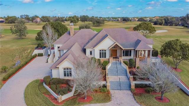 12333 Tradition Drive, Dade City, FL 33525 (MLS #T3285491) :: The Paxton Group