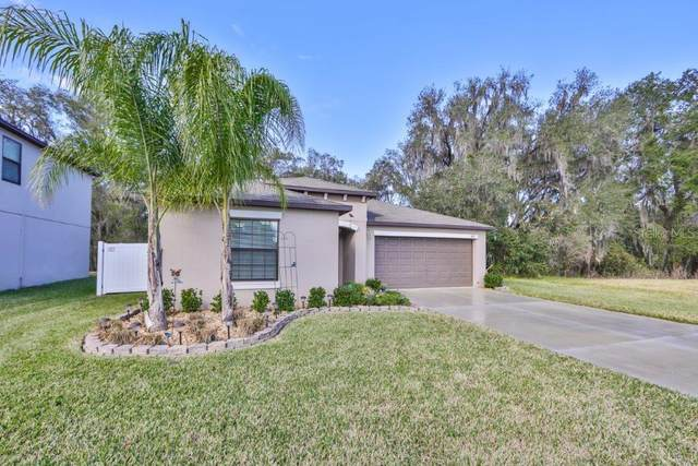 3123 Moulden Hollow Drive, Zephyrhills, FL 33540 (MLS #T3285518) :: Premium Properties Real Estate Services