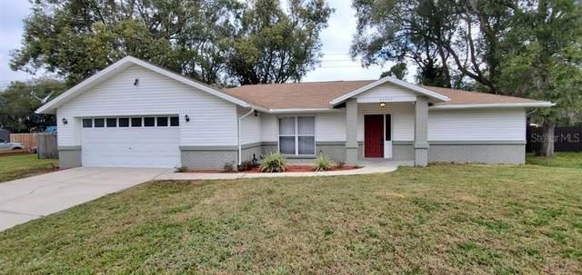 22247 Laver Lane, Land O Lakes, FL 34639 (MLS #T3285558) :: Delta Realty, Int'l.