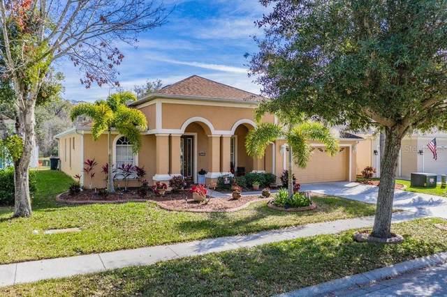 10536 Sky Flower Court, Land O Lakes, FL 34638 (MLS #T3285563) :: Premier Home Experts