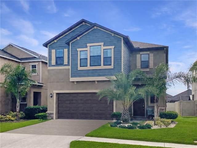 10015 Ivory Drive, Sun City Center, FL 33573 (MLS #T3285570) :: The Heidi Schrock Team