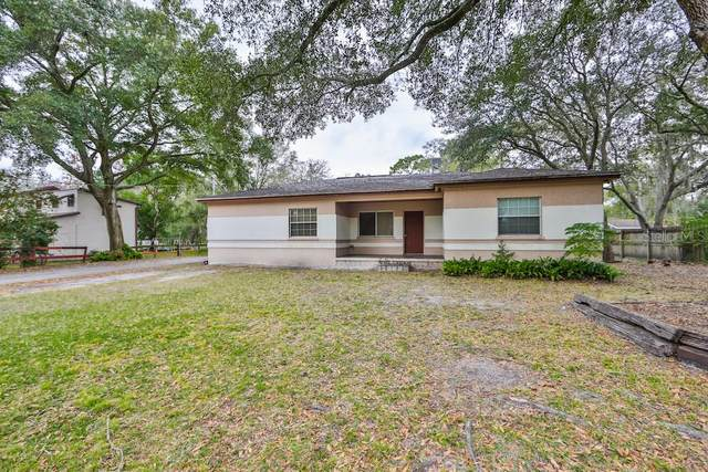 7411 Alafia Drive, Riverview, FL 33578 (MLS #T3285592) :: Dalton Wade Real Estate Group