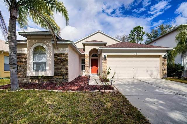 15647 Leatherleaf Lane, Land O Lakes, FL 34638 (MLS #T3285625) :: Everlane Realty