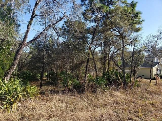 12168 Lark Sparrow Road #4, Weeki Wachee, FL 34613 (MLS #T3285628) :: Baird Realty Group
