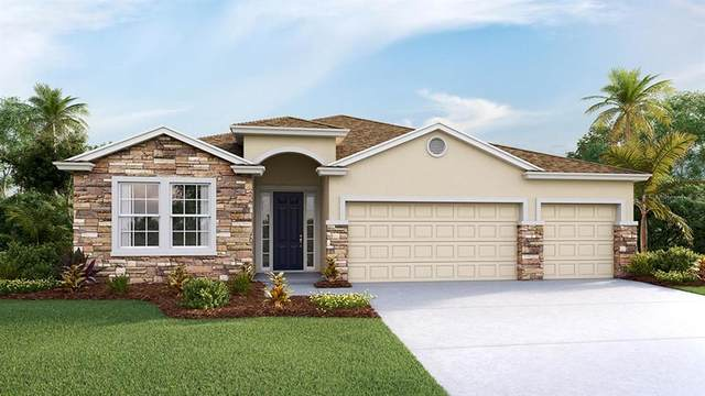 3458 Autumn Amber Drive, Spring Hill, FL 34609 (MLS #T3285667) :: Visionary Properties Inc