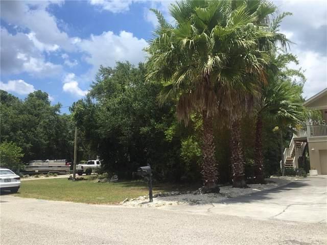 Phoenix Avenue, Oldsmar, FL 34677 (MLS #T3285675) :: Heckler Realty