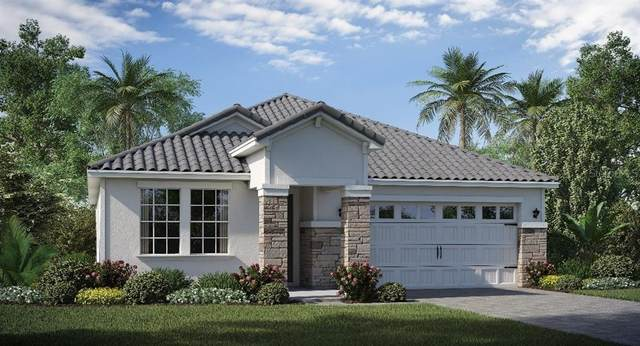8950 Fluffy Lie Court, CHAMPIONS GT, FL 33896 (MLS #T3285679) :: Premier Home Experts