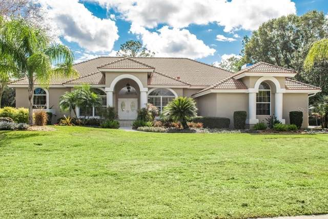 30248 Laurelwood Lane, Wesley Chapel, FL 33543 (MLS #T3285699) :: Cartwright Realty