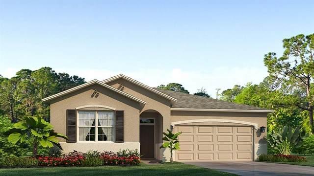 6376 SW 89TH STREET Road, Ocala, FL 34476 (MLS #T3285712) :: Delta Realty, Int'l.