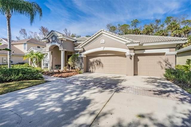 16346 Heathrow Drive, Tampa, FL 33647 (MLS #T3285713) :: Team Bohannon Keller Williams, Tampa Properties
