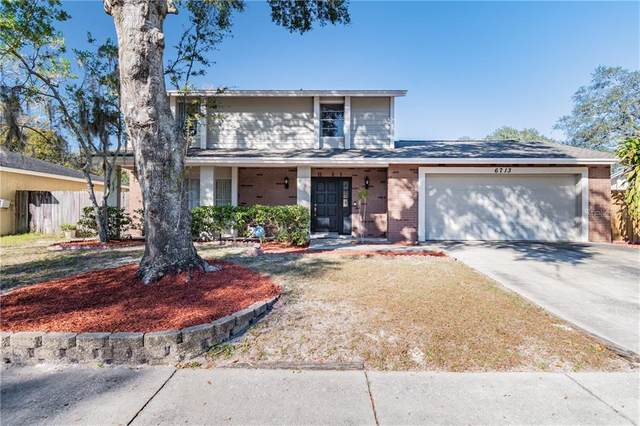 6713 Spanish Moss Circle, Tampa, FL 33625 (MLS #T3285727) :: Carmena and Associates Realty Group