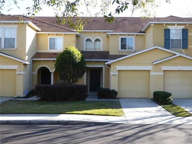 10827 Johanna Avenue, Riverview, FL 33578 (MLS #T3285732) :: Young Real Estate