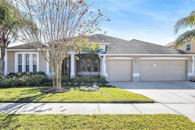 26910 Shoregrass Drive, Wesley Chapel, FL 33543 (MLS #T3285733) :: Everlane Realty