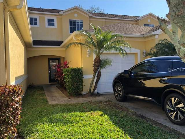 11013 Blaine Top Place, Tampa, FL 33626 (MLS #T3285734) :: Cartwright Realty