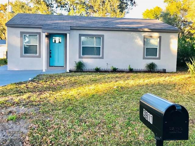 3911 W Walnut Street, Tampa, FL 33607 (MLS #T3285738) :: Everlane Realty