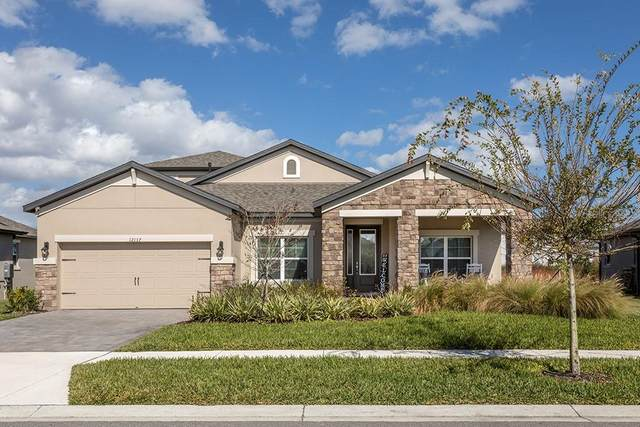 12137 Homesteader Avenue, Odessa, FL 33556 (MLS #T3285748) :: Premier Home Experts