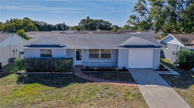 7424 San Moritz Drive, Port Richey, FL 34668 (MLS #T3285764) :: The Duncan Duo Team