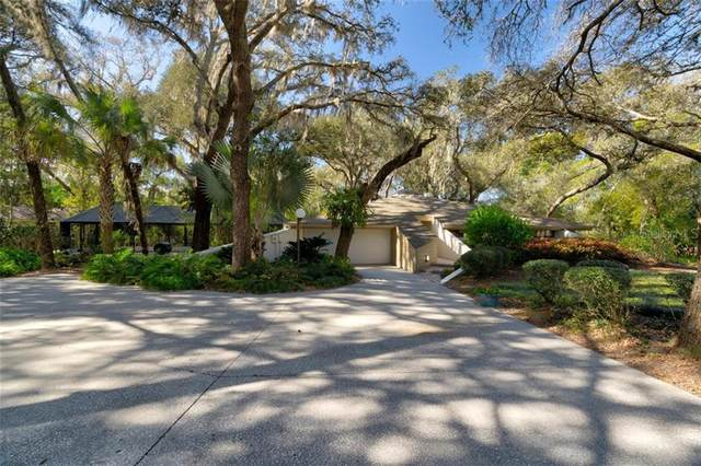 18406 Timberlan Drive, Lutz, FL 33549 (MLS #T3285774) :: Griffin Group