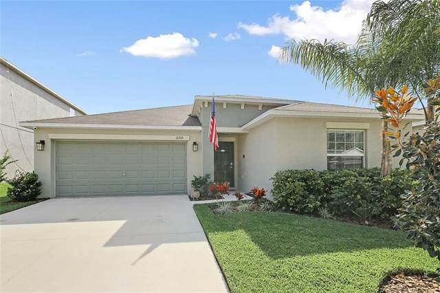 10245 Strawberry Tetra Drive, Riverview, FL 33578 (MLS #T3285786) :: Godwin Realty Group