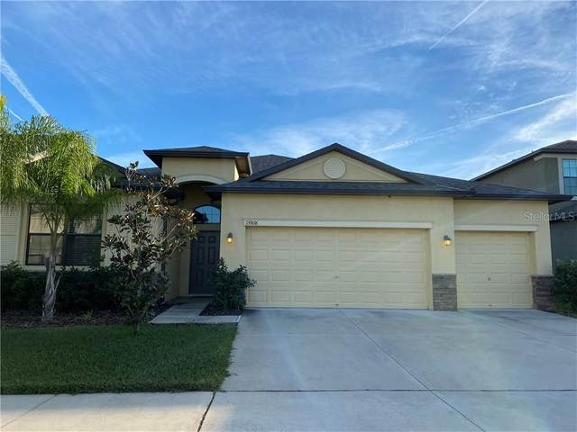13908 Felix Will Road, Riverview, FL 33579 (MLS #T3285815) :: Carmena and Associates Realty Group