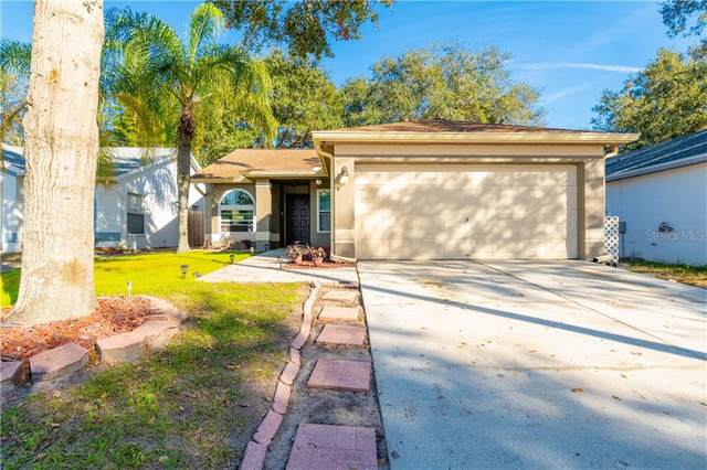 13610 Laraway Drive, Riverview, FL 33579 (MLS #T3285841) :: Gate Arty & the Group - Keller Williams Realty Smart