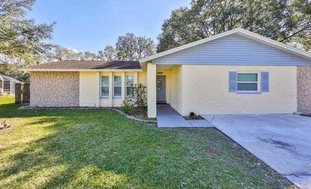 513 Pine Lane, Brandon, FL 33511 (MLS #T3285860) :: Griffin Group