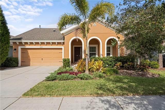 6515 Nestall Court, Apollo Beach, FL 33572 (MLS #T3285967) :: Bridge Realty Group