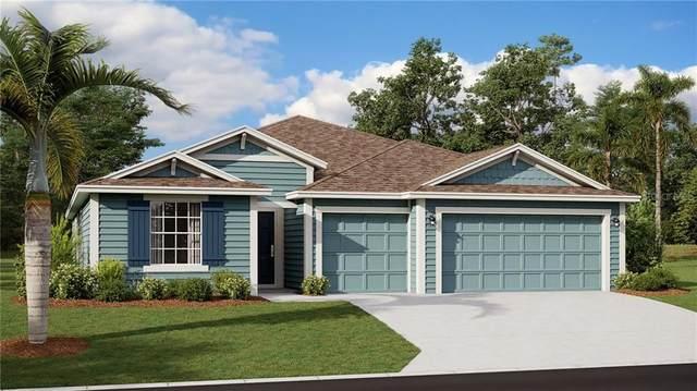 5663 Alenlon Way, Mount Dora, FL 32757 (MLS #T3285977) :: Visionary Properties Inc