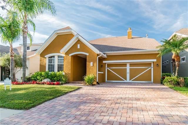 11523 Meridian Point Drive, Tampa, FL 33626 (MLS #T3285999) :: Dalton Wade Real Estate Group