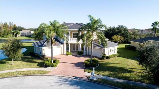 19133 Harborbridge Lane, Lutz, FL 33558 (MLS #T3286004) :: Delta Realty, Int'l.