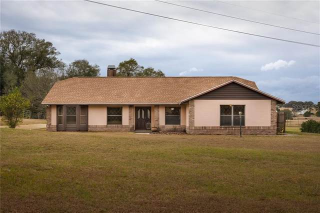 21049 Trilby Cemetery Road, Dade City, FL 33523 (MLS #T3286020) :: Everlane Realty
